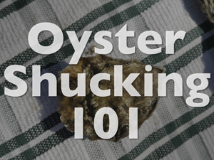 Oyster Shucking 101